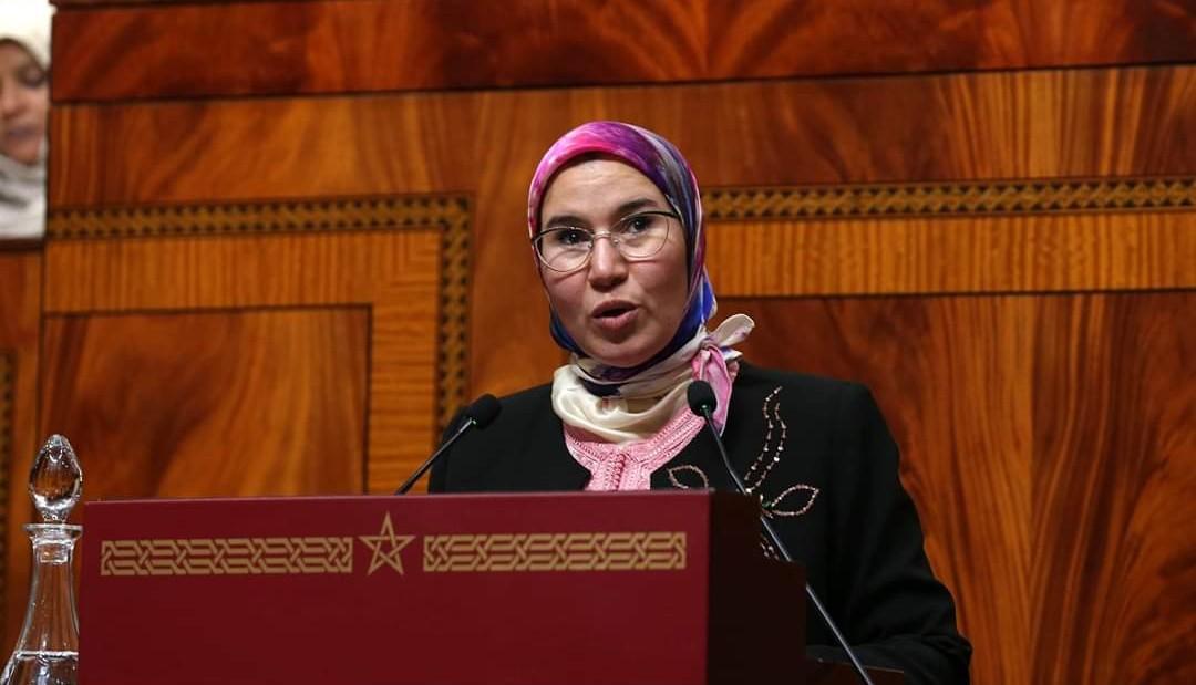 مجلس النواب يصادق بالإجماع على مشروع قانون تنظيميوتسع اتفاقيات دولية