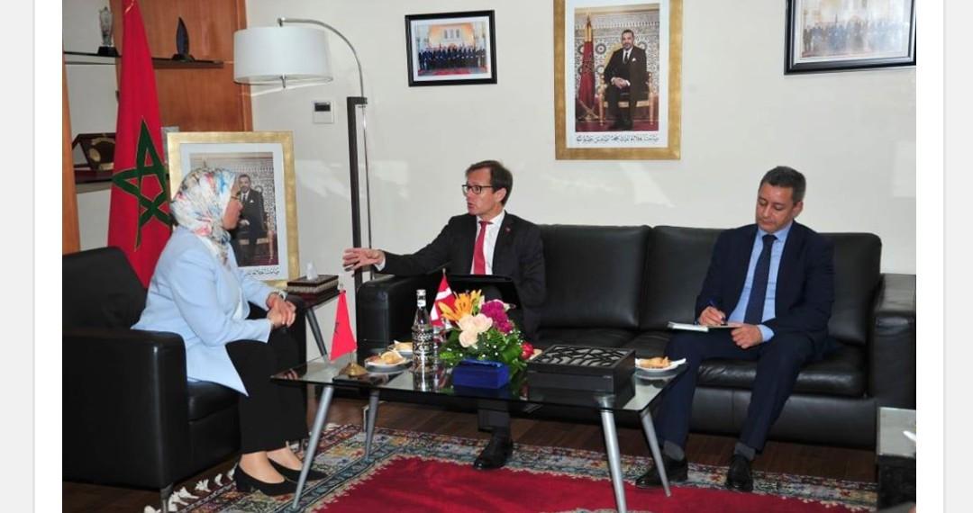 الوزيرة الوافي تستقبل سفير الدنمارك بالمغرب السيد  نيكولايج هاريس