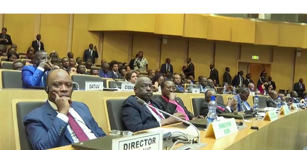 المرصد الإفريقي للهجرة .. بادرة ملكية تحظى بإجماع القارة